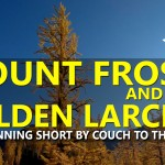New Short Film: Mount Frosty and the Golden Larches